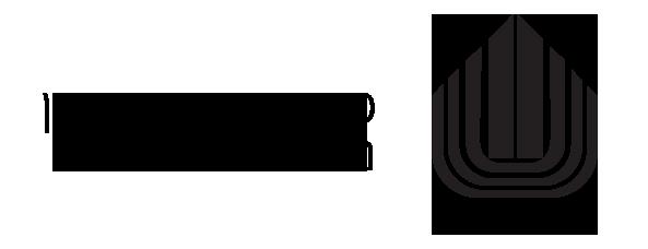 פנס ראש אנקור כולל סוללות -שחור